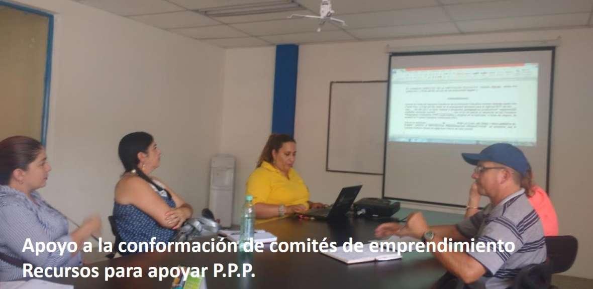 Comités de emprendimiento